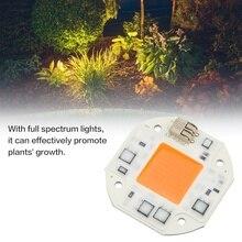 COB LED Chip Full Spectrum Plant Grow Light  for Greenery Plant Flower Green House Lamp Floodlight Lamp Bulb Led Beads недорого