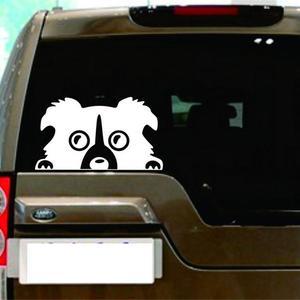 Image 5 - 1 шт., автомобильная Светоотражающая наклейка для собак, 14 х8 см