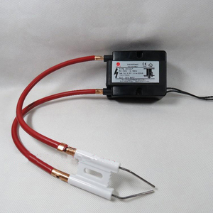 Image 5 - Queimador de alta tensão pulso ignição cerâmica agulha caldeira combustão gás fogão ignitor duplo couplet faísca eletrodo