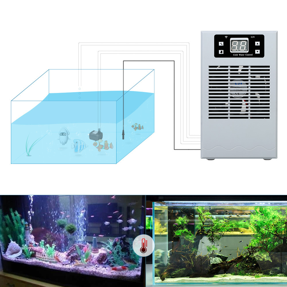 Réfrigérateur d'aquarium 20L réservoir de poisson Machine de refroidissement par eau contrôleur de température de l'eau accessoires d'aquarium