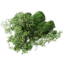 Mayitr 1pcs 10g Creative Artificial Moss Solid Color Fake Grass Plant for Garden Hotel Home Party DIY Craft Decoration