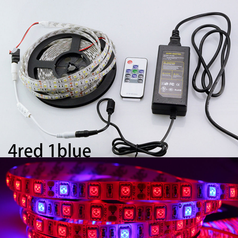 2m LED Phyto Lamps Grow Lights 12V Red Blue LED Strip Plant Growth Light Set For Greenhouse Hydroponic Plant Growing 3a Adapter