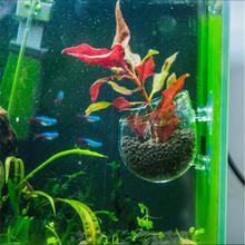 Get more info on the Aquarium Fish Tank Aquatic Landscape Cup Mini Polka Type Water Grass Breeding Terrarium Crystal Glass Planting Pot Decor Basin