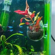 Popular Fish Aquarium Types Buy Cheap Fish Aquarium Types Lots From