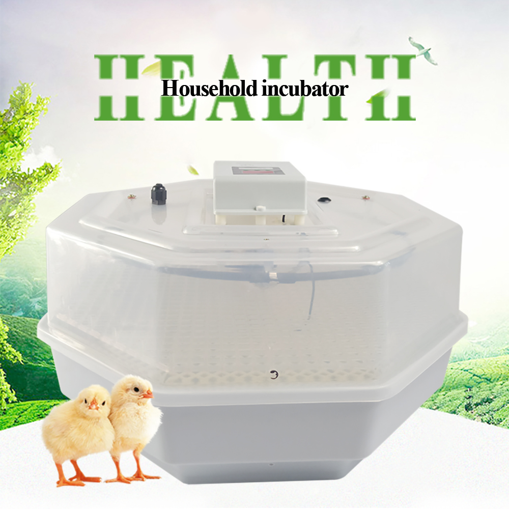 Automatic egg incubator for household high hatching rate egg hatchery machine for chicken bird ducks hatching hatcherAutomatic egg incubator for household high hatching rate egg hatchery machine for chicken bird ducks hatching hatcher