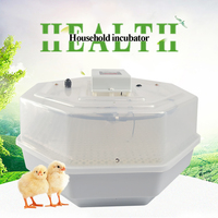 Automatic egg incubator for household high hatching rate egg hatchery machine for chicken bird ducks hatching hatcher