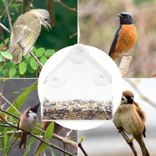 Акриловый прозрачный птица Кормушка Для белки лоток скворечник окна присоске инструменты попугай Lovebird канарейка еда голубь зоотоваров