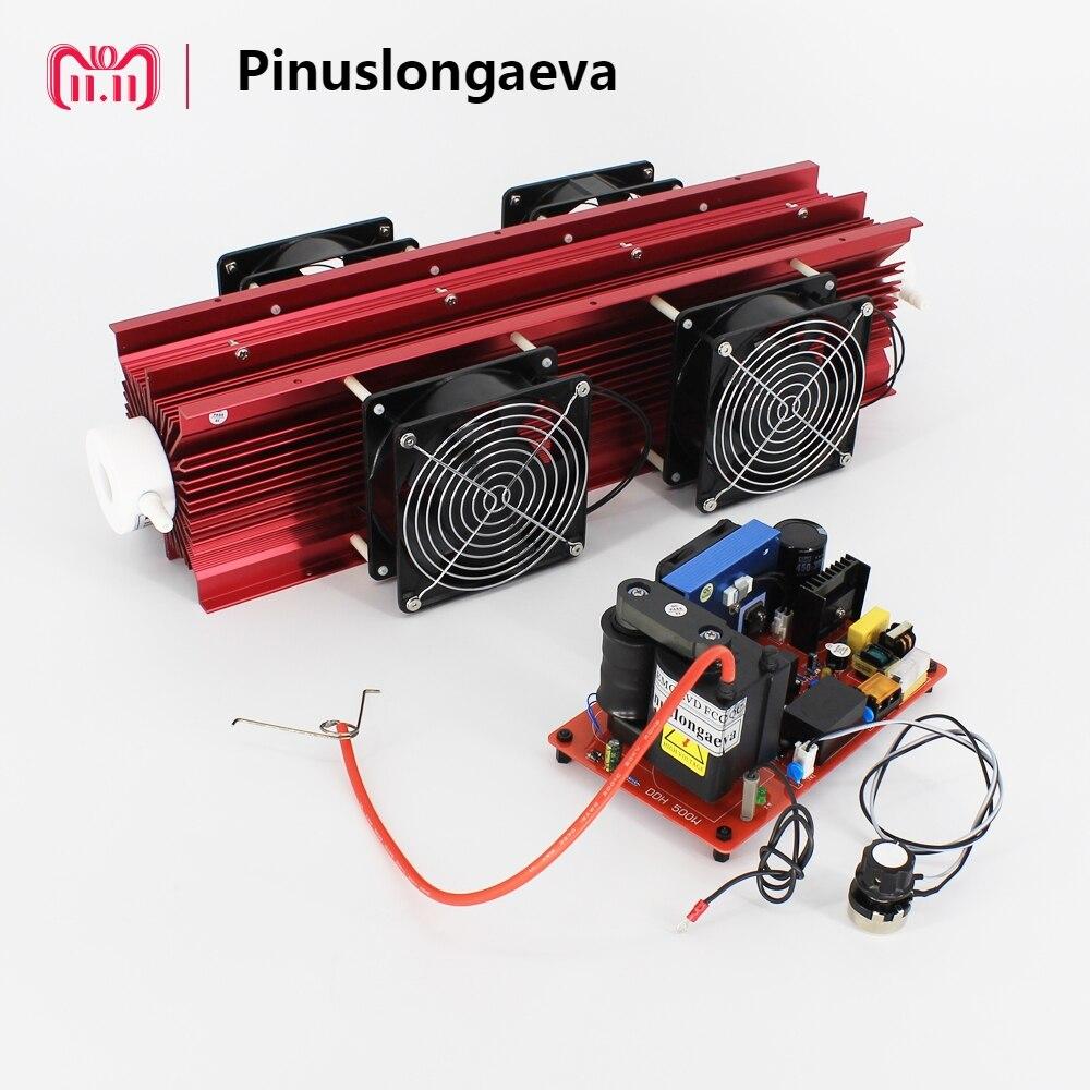 Pinuslongaeva 20g 40g 60 g/h regolabile tipo di tubo di Quarzo Kit generatore di ozono piscina ozono invece di cloro disinfezione