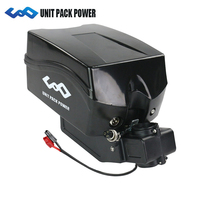 48v 750W 1000w Electric Bike Battery 48V 14AH ebike Lithium Battery pack with 30A bms 2A charger