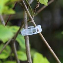 Вегетарианское садовое растение для поддержки зажим для растений/Пластиковые зажимы для браслетов/зажим 100 шт