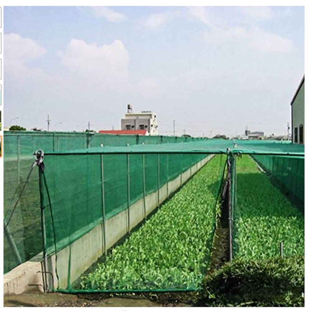 4x10/12m Anti-bird Net Garden Plant Covers Orchard Fruit Vegetable Protect Drawstring Fence Mesh Anti Hail Net  Mesh Size 1.5cm