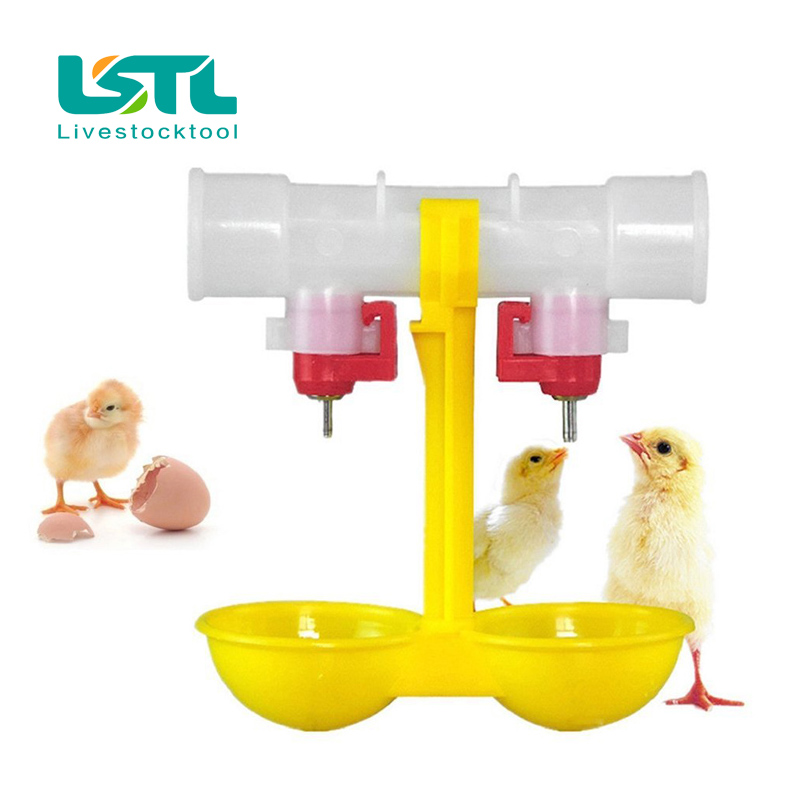 40Pcs lot Poultry Chicken Waterer Dual Ball Drinking Double Hanging Cup Pigeon Quail Drinking Cup Ball
