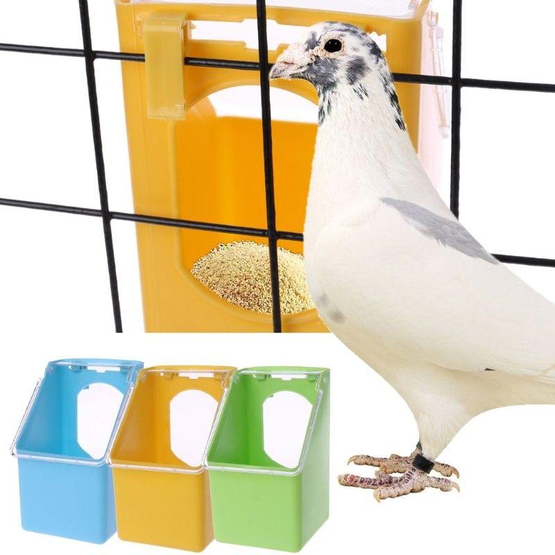 visely bílé ptáky