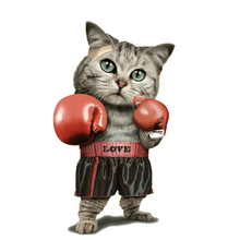 Cat Boxing Sticker Patches Iron on Clothes Heat Transfers Printed A-level Washable DIY Thermo-Stickers for clothes