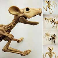 Esqueleto de Halloween gato perro ratón Prop murciélago huesos fiesta tienda decoración Horror nuevo