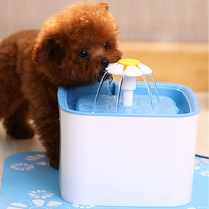 Dog Cat Drink Dish Filter Shee