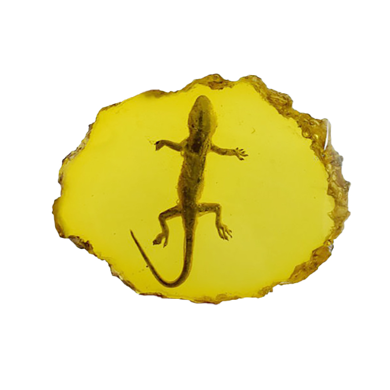 Fashion Yellow Amber Gecko Amber Ornaments For Real Insect Specimens|Figurines & Miniatures| |  - title=