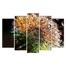Artwork Poster HD Prints Home Decoration 5 Pieces Dandelion Wall Art Living Room Pictures Canvas Painting Cairnsi Free Shipping