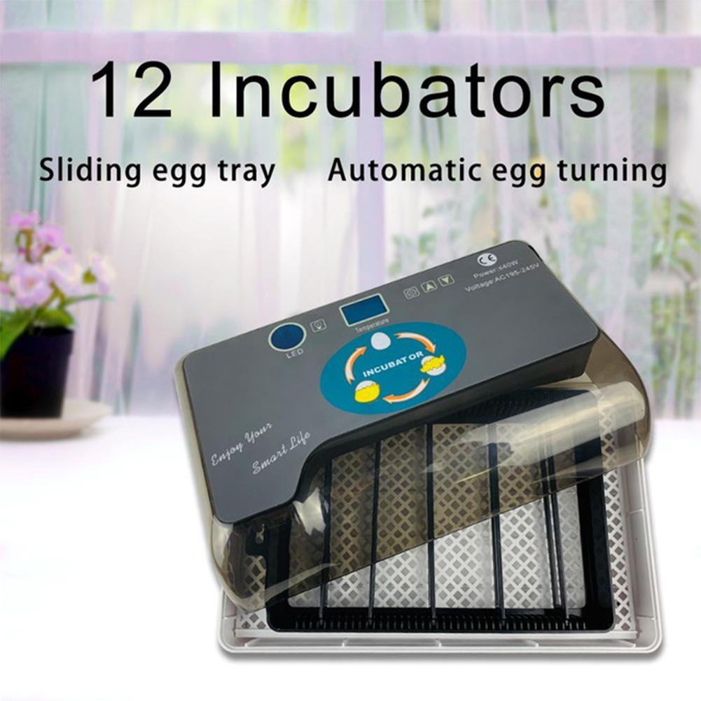 LanLan 12 ไข่อุณหภูมิควบคุมอุปกรณ์ Mini Home Incubators สำหรับไก่นกกระทาเป็ดไข่จอแสดงผล LCD-ใน อุปกรณ์ให้อาหารและน้ำ จาก บ้านและสวน บน   1