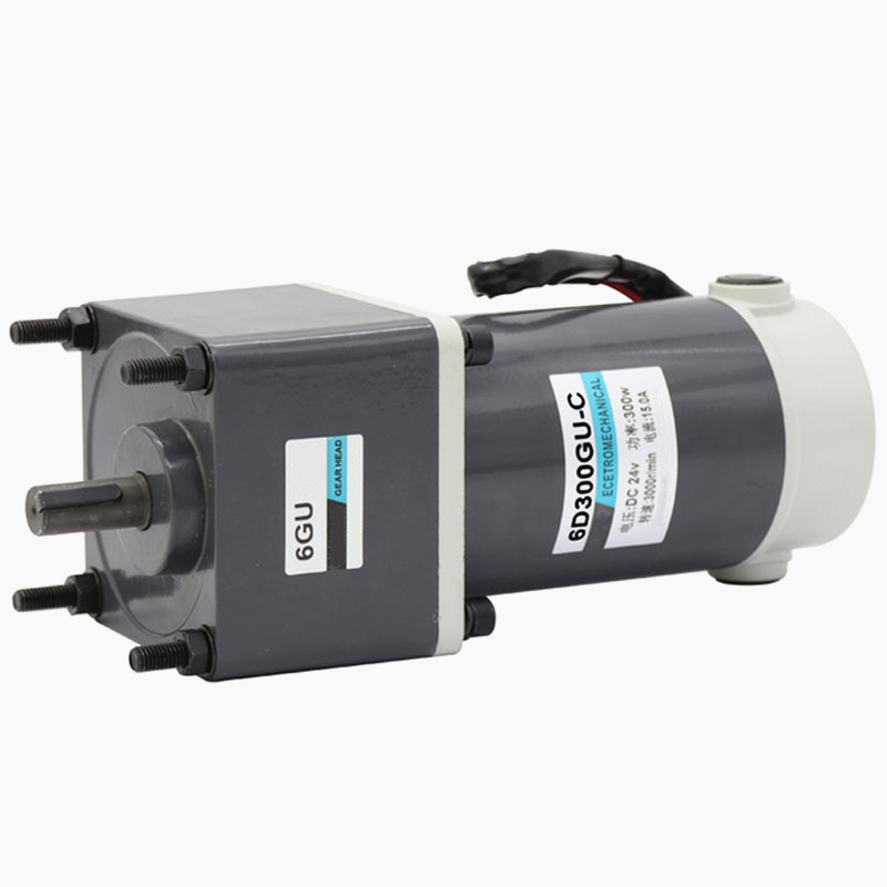 300W powerful brush speed control dc motor forward reverse turn low speed gear motor 12V 24V