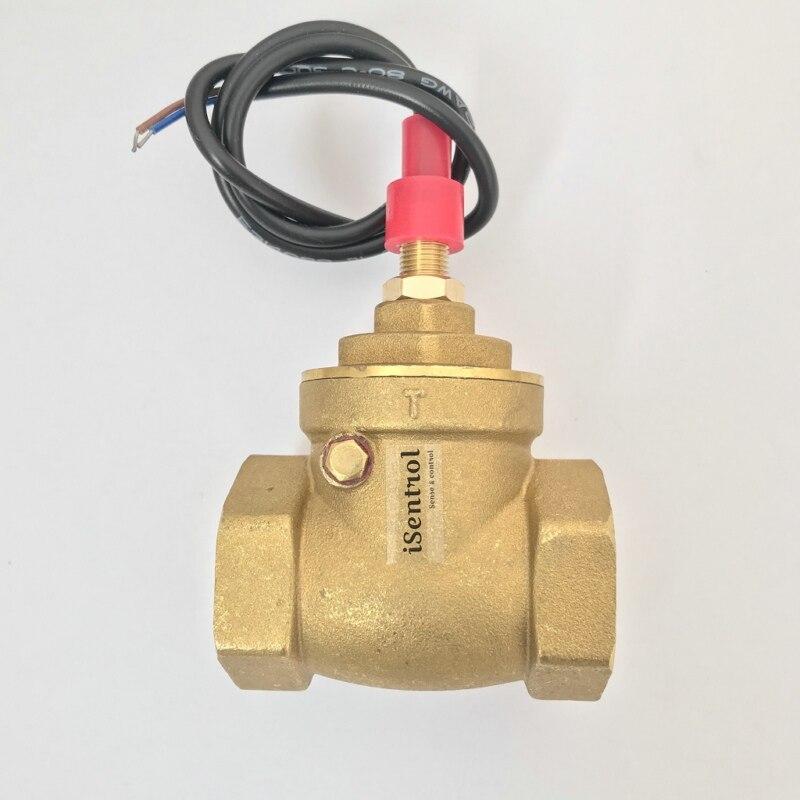 USP-FS10TA Paddle Type Flow Sensor Switch Reed Switch Brass Magnetic Sensor Switch 8-50L/min 250V DC 70W 2 Wire Saier Switch