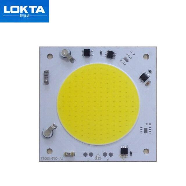 10PCS/LOT COB LED Lamp Chip 20W 30W 40W  LED COB Bulb Lamp 220V Smart IC Driver Cold  White LED Spotlight Floodlight Chip