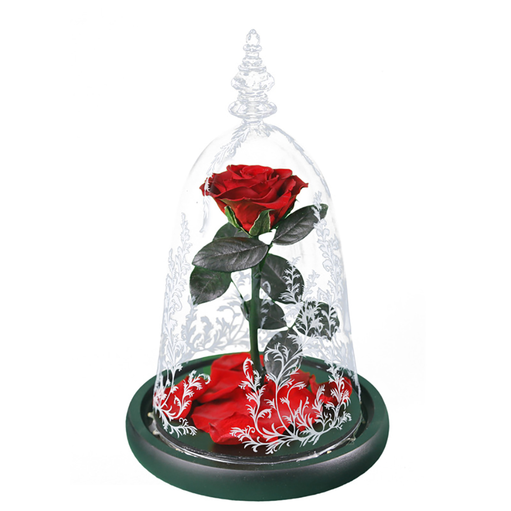 Eternal Life Flower Valentine's Day Mother's Day Gift Romance Eternal Life Flower Finished Glass Cover Beauty And Beast Rose