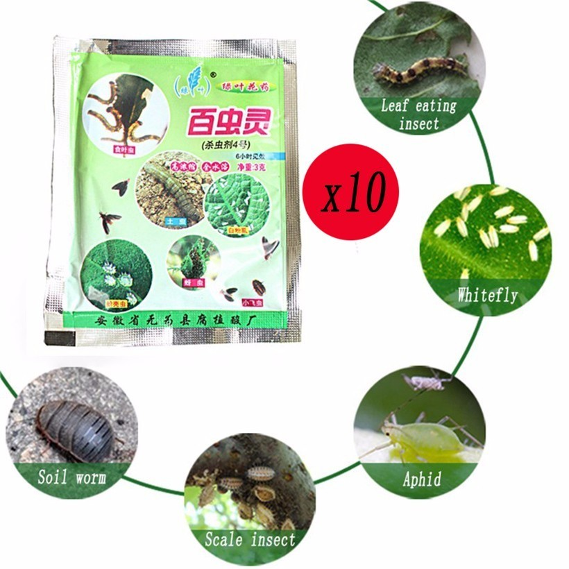 10 Pcs/ Lot Effective Chemical Insecticide Anther Flowers Insecticide  Prevention Of Pests Plant Successfully Grown Pest Control
