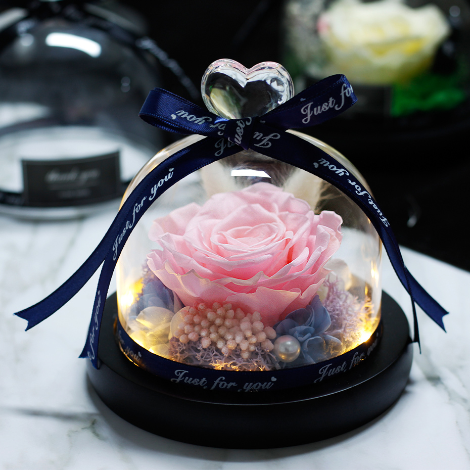 Mother Day Present The Beauty And Beast Rose Romantic Valentine 39 s Day Gifts Eternal Exclusive Rose In Glass Dome Birthday Gift in Artificial amp Dried Flowers from Home amp Garden