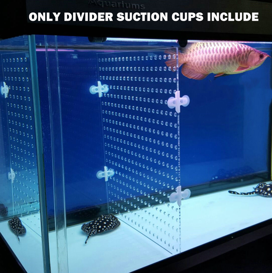 Aquarium Acrylic Divider Full Holes With 4pcs Suction Cup Free For Betta Fish Guppies Tank Black Blue Clear