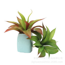 Simulated green plant decorative ornaments Potted large fleshy plants tequila plastic flower potted