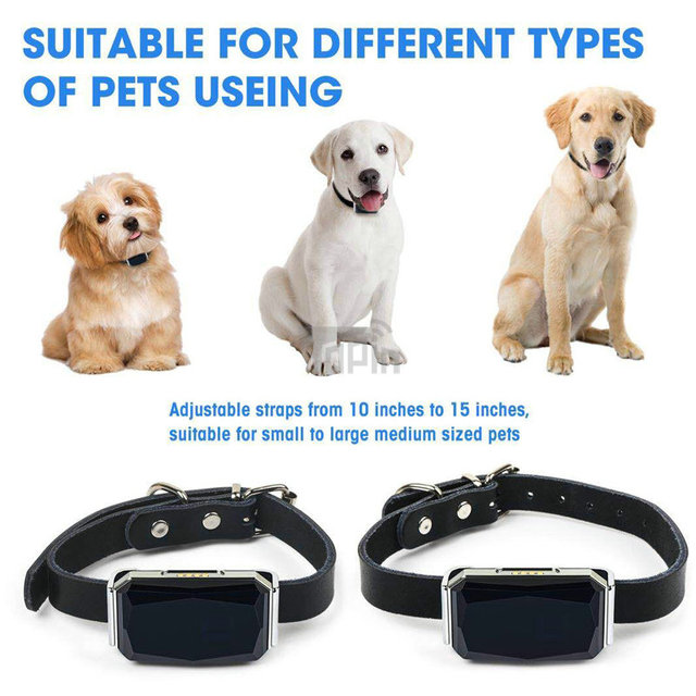 New Arrival IP67 Waterproof Pet Collar GSM AGPS Wifi LBS Mini Light GPS Tracker for Pets Dogs Cats Cattle Sheep Tracking Locator 3