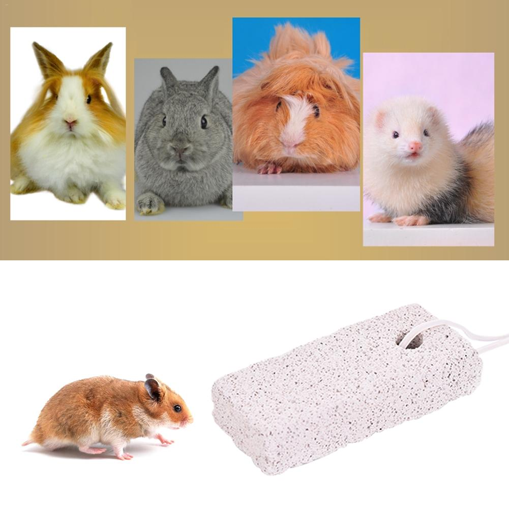 Hamster Rabbit Teeth Grinding Stone Molar Stone Chew Toys Small Pet Supplies Minerals For Chinchillas Guinea Pig Quick Delivery