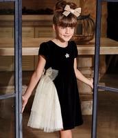 2019 New Luxury Children's Wear Noble Black Swan Champagne Princess Dress Baby Girls Party Dress