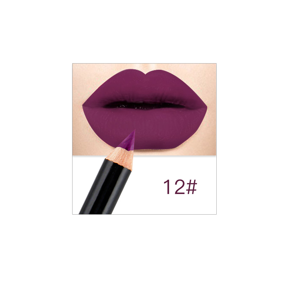 12 Colors Fashion Matte Lip Liner Lipstick Pen  Long Lasting Pigments Waterproof No Blooming Smooth Soft Makeup Tool New  TSLM1