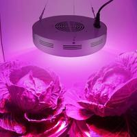 300W Growing Lamps LED Grow Light Full Spectrum Plant Lighting Fitolampy For Plants Flowers Seedling Cultivation