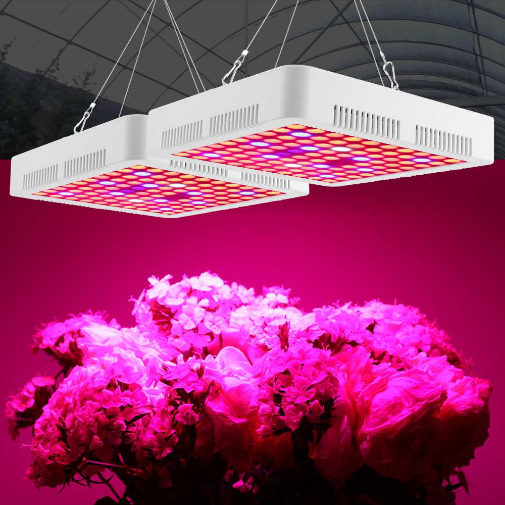 High Power 2000W/3000W LED grow light Full Spectrum for Indoor Greenhouse grow tent plants grow led light Veg Bloom mode US/EUHigh Power 2000W/3000W LED grow light Full Spectrum for Indoor Greenhouse grow tent plants grow led light Veg Bloom mode US/EU
