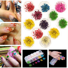 цена на 12 Color 3D Decoration Real Dry Dried Flower Nail Art Sticker for Tips UV Gel Acrylic Nail DIY Art Tips Nail Art Decorations