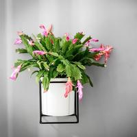 1 Set Square Iron Ceramic Wall Mounted Nordic Green Plant Flower Succulent Stand Pot Holder