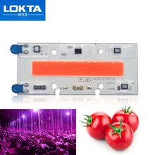 10 PCS Led Grow Light Chip 30W 50W 70W Full Spectrum 380nm~780nm AC Best For Hydroponics Greenhouse DIY for  COB Lamps