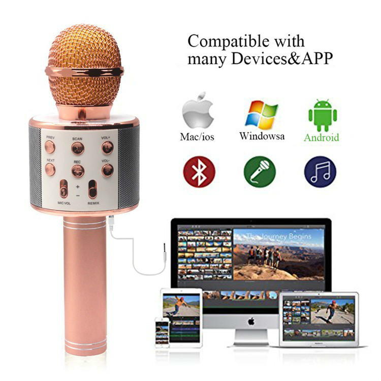 WS858 Professional Wireless karaoke Microphone Speaker Condenser Microfono with Bag Bluetooth Radio Studio Record Mic PK WS 858 in Microphones from Consumer Electronics