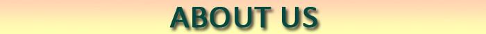 HLB1qhziFFXXXXbqaXXXq6xXFXXX0 - SMHONG 2017 Baby Girls Flower T-shirt Summer Clothing for Girl Kids Tees Children Short Sleeve T shirt 100% cotton Top quality