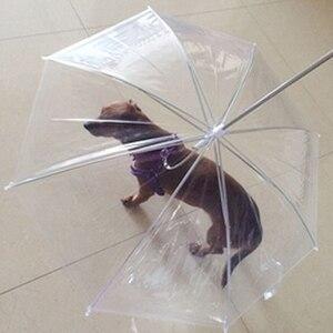 Image 4 - כלב הליכה עמיד למים ברור כיסוי מובנה רצועה גשם מעורב בשלג שלג מטריית חיות מחמד מוצרים לחיות מחמד חדש
