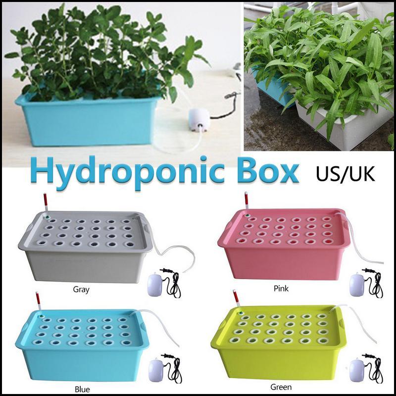 24 trous US/UK Plug Kit système hydroponique intérieur armoire de jardin boîte cultiver Kit bulle jardin Pots planteur pépinière Pot