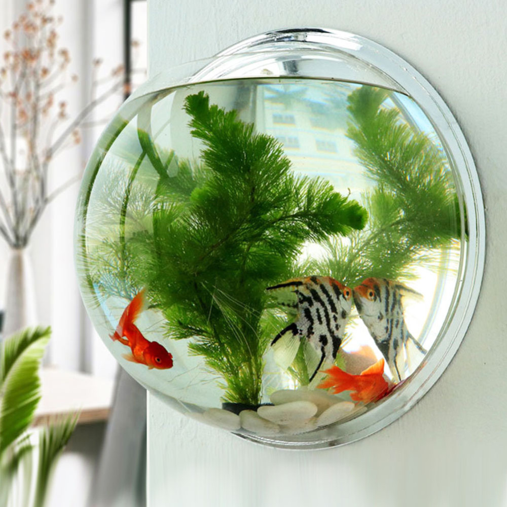 Acrylic Fish Bowl Wall Hanging Aquarium Tank Aquatic Pet