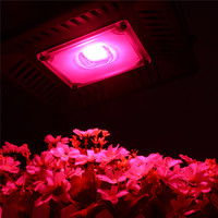 LED grow light 50W Full Spectrum for Indoor Greenhouse grow tent plants grow led floodlight Outdoor Spotlight Square Wall Light