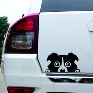 Image 5 - Professional 1pc New 14*8CM Border Collie DOG Personality Reflective Glass Rear Pet Car Sticker Black White