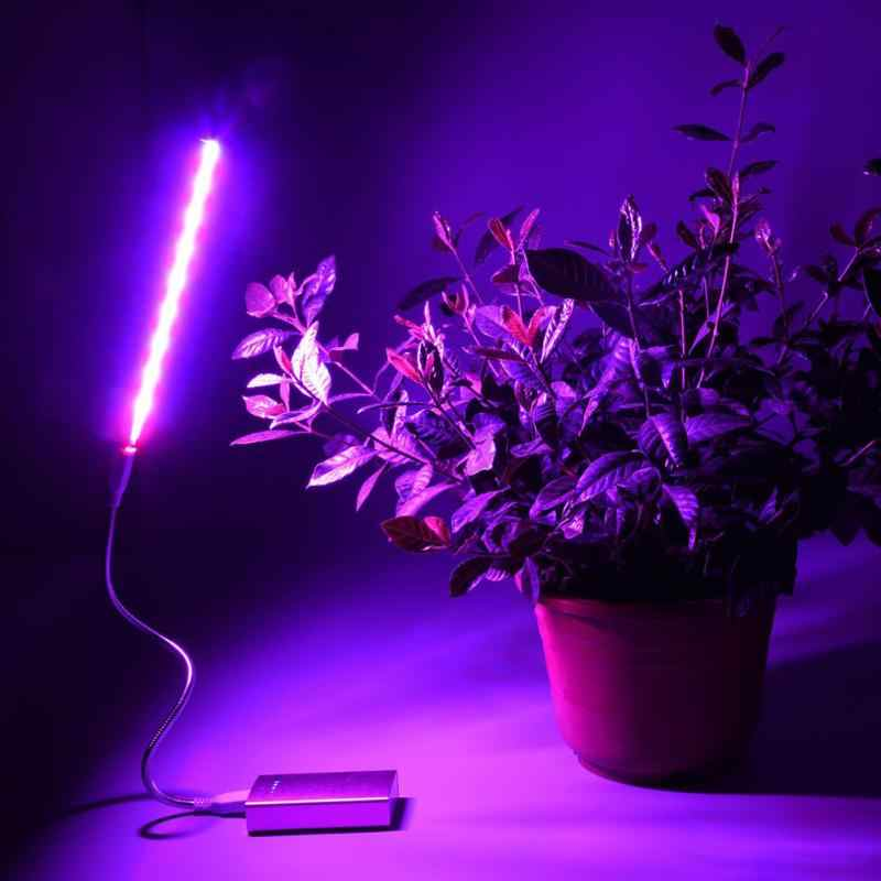USB LED Plant Growth Lamp Full Spectrum Lights Silvery Body For Hydroponics System Greenhouse Green Plant
