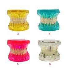 Detachable Dental Teeth Model With Restoration Bridge Tooth Dentist For New Dentist Traning Dental Teaching Study dental premature disease teeth model transparent caries pathological demonstration tooth child study teaching showing 2018