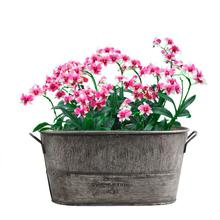 1pcs Retro Galvanized Iron Flowerpot Decoration Planter European Style Antique Finish Metal Made Flower Pot